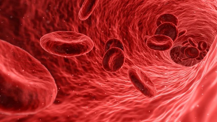 Médecine interne Onco-hématologie